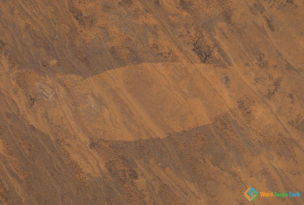 Nessie in Australian Desert, Illintjitja Homeland, South Australia, Australia