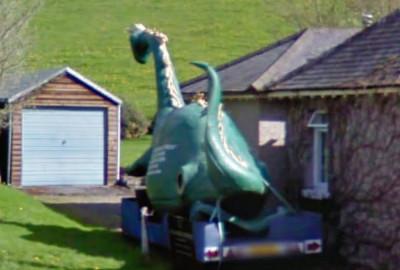 Nessie In The Backyard