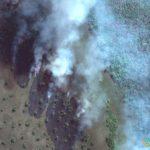 Forest Fire, Mato Grosso, Brazil