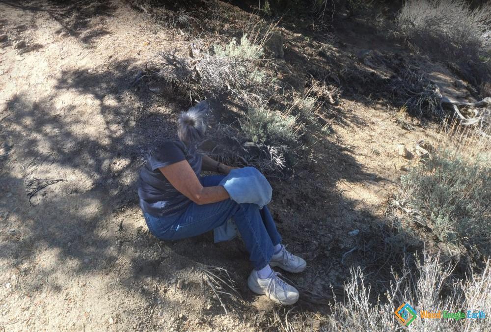 Headless, Tuttle Creek Trailhead, California, USA