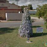 Deer Horn Tree, Junction, Texas, USA
