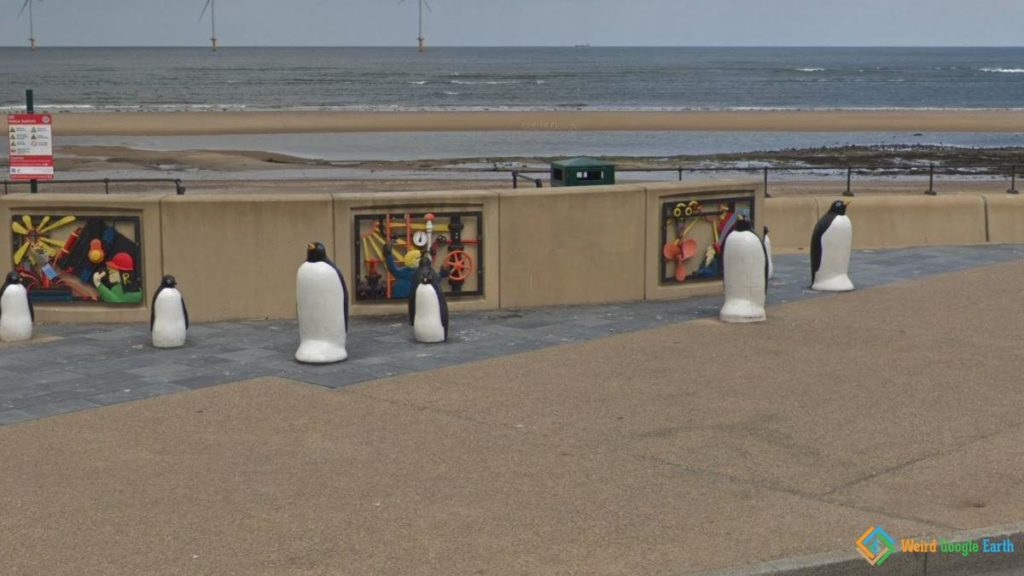 Penguins in the Beach, Redcar, England