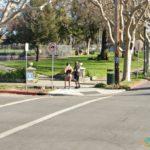 No Pants Lady, San Jose, California, USA