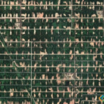 Duri Oil Field, Sumatra, Indonesia