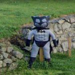 Scare-Batman or Batman-Crow?, County Wicklow, Ireland