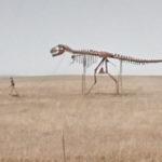 Skeleton Life, Midland, South Dakota, USA