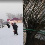 Split Reality, Torgovyy Tsentr, Russia